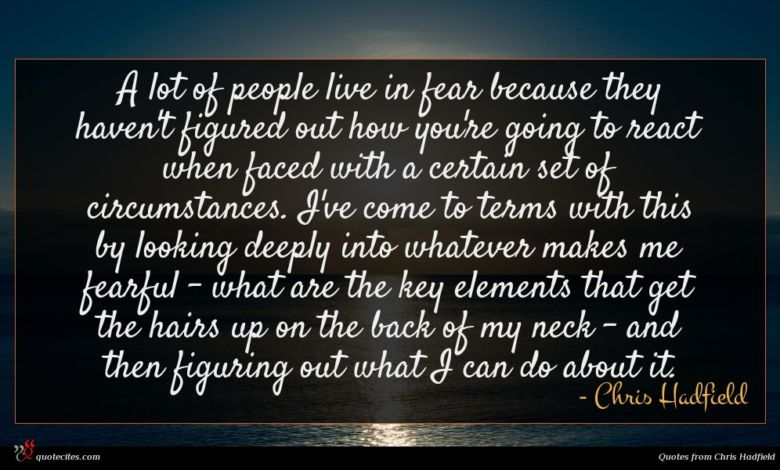 A lot of people live in fear because they haven't figured out how you're going to react when faced with a certain set of circumstances. I've come to terms with this by looking deeply into whatever makes me fearful - what are the key elements that get the hairs up on the back of my neck - and then figuring out what I can do about it.