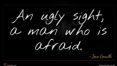 Photo of Jean Anouilh quote : An ugly sight a …
