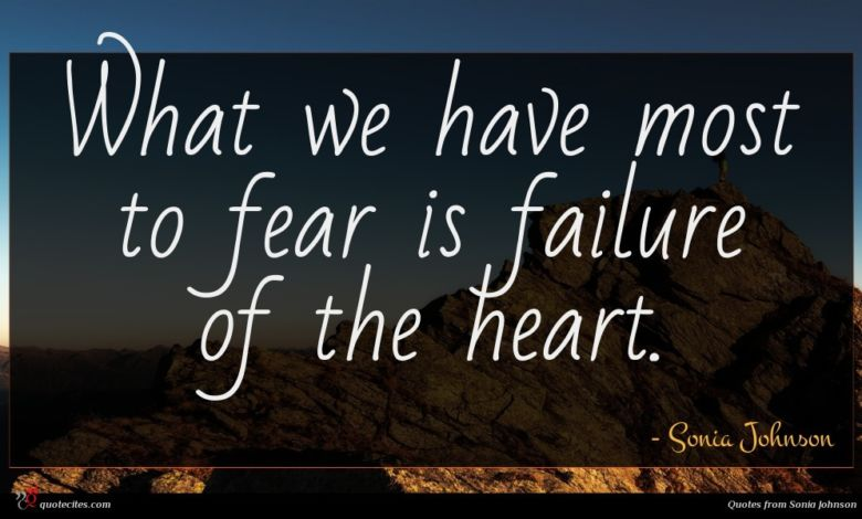 What we have most to fear is failure of the heart.