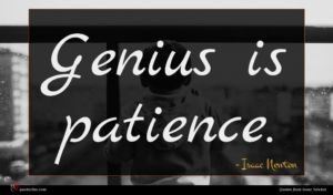 Isaac Newton quote : Genius is patience ...