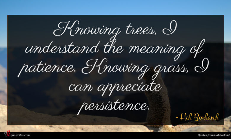 Knowing trees, I understand the meaning of patience. Knowing grass, I can appreciate persistence.