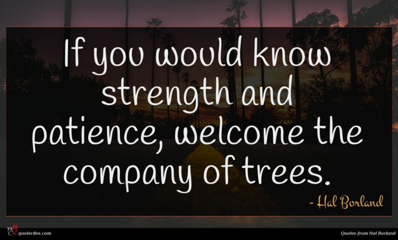 If you would know strength and patience, welcome the company of trees.