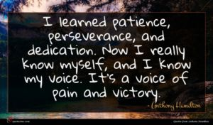 Anthony Hamilton quote : I learned patience perseverance ...