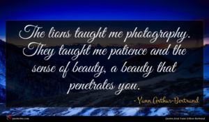 Yann Arthus-Bertrand quote : The lions taught me ...