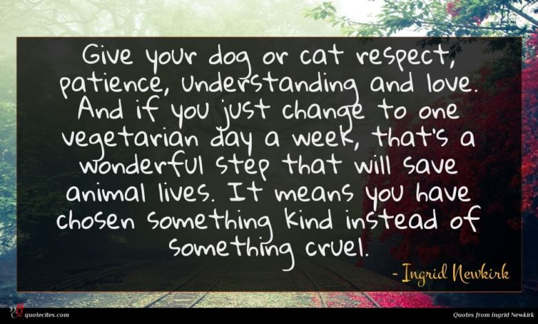 Give your dog or cat respect, patience, understanding and love. And if you just change to one vegetarian day a week, that's a wonderful step that will save animal lives. It means you have chosen something kind instead of something cruel.