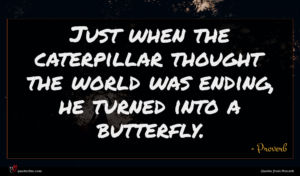 Proverb quote : Just when the caterpillar ...
