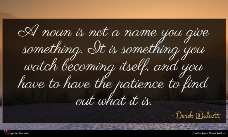 A noun is not a name you give something. It is something you watch becoming itself, and you have to have the patience to find out what it is.