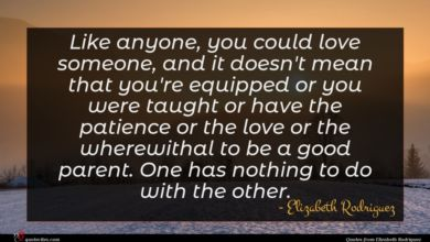 Photo of Elizabeth Rodriguez quote : Like anyone you could …
