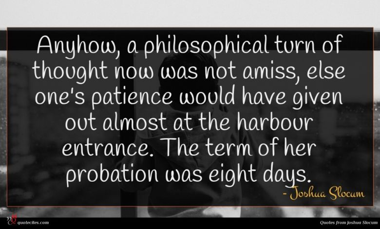 Anyhow, a philosophical turn of thought now was not amiss, else one's patience would have given out almost at the harbour entrance. The term of her probation was eight days.