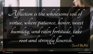 David Mallet quote : Affliction is the wholesome ...