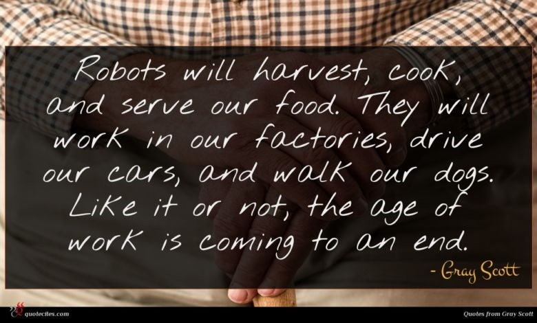 Robots will harvest, cook, and serve our food. They will work in our factories, drive our cars, and walk our dogs. Like it or not, the age of work is coming to an end.