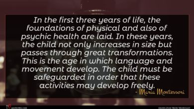 Photo of Maria Montessori quote : In the first three …