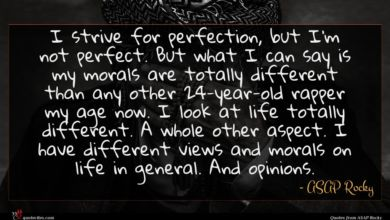 Photo of ASAP Rocky quote : I strive for perfection …