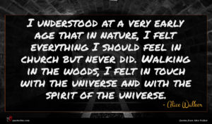 Alice Walker quote : I understood at a ...