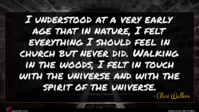 Photo of Alice Walker quote : I understood at a …