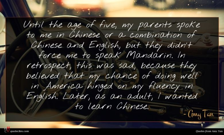 Until the age of five, my parents spoke to me in Chinese or a combination of Chinese and English, but they didn't force me to speak Mandarin. In retrospect, this was sad, because they believed that my chance of doing well in America hinged on my fluency in English. Later, as an adult, I wanted to learn Chinese.