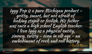David Means quote : Iggy Pop is a ...