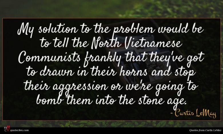 My solution to the problem would be to tell the North Vietnamese Communists frankly that they've got to drawn in their horns and stop their aggression or we're going to bomb them into the stone age.