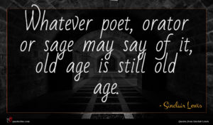 Sinclair Lewis quote : Whatever poet orator or ...