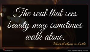 Johann Wolfgang von Goethe quote : The soul that sees ...