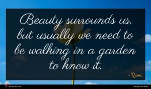 Rumi quote : Beauty surrounds us but ...