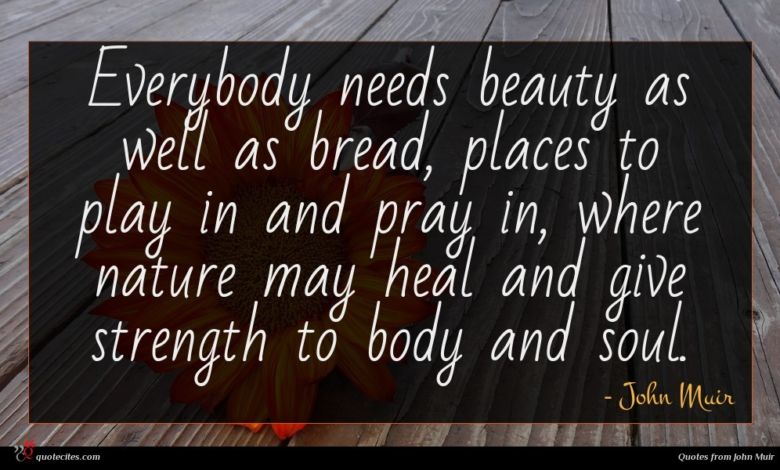 Everybody needs beauty as well as bread, places to play in and pray in, where nature may heal and give strength to body and soul.