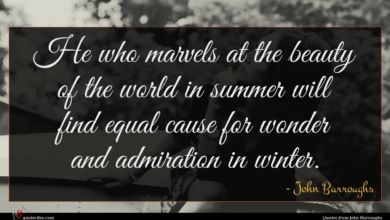 Photo of John Burroughs quote : He who marvels at …