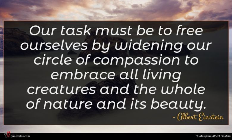 Photo of Albert Einstein quote : Our task must be …