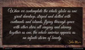 John Muir quote : When we contemplate the ...