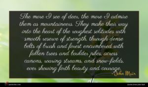 John Muir quote : The more I see ...