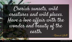 Stewart Udall quote : Cherish sunsets wild creatures ...