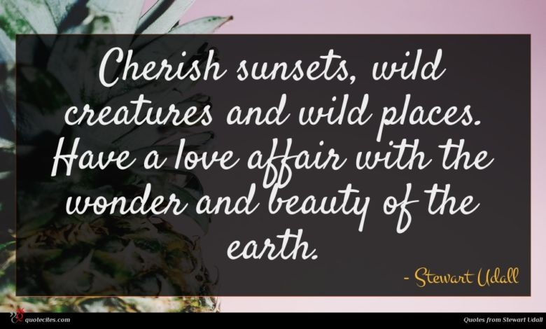 Cherish sunsets, wild creatures and wild places. Have a love affair with the wonder and beauty of the earth.