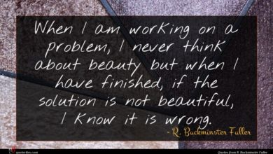 Photo of R. Buckminster Fuller quote : When I am working …