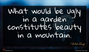 Victor Hugo quote : What would be ugly ...