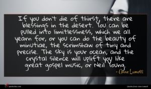 Anne Lamott quote : If you don't die ...