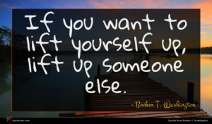 Booker T. Washington quote : If you want to ...