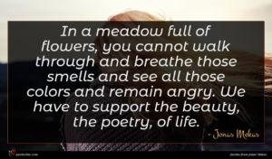 Jonas Mekas quote : In a meadow full ...