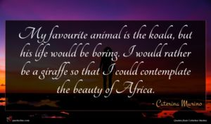 Caterina Murino quote : My favourite animal is ...