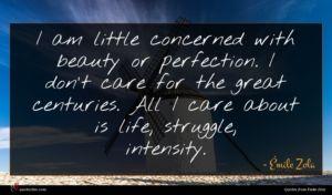 Émile Zola quote : I am little concerned ...