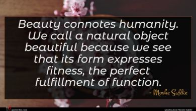 Photo of Moshe Safdie quote : Beauty connotes humanity We …