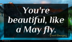 Ernest Hemingway quote : You're beautiful like a ...