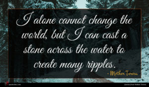 Mother Teresa quote : I alone cannot change ...