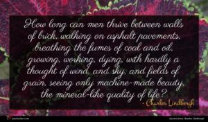 Charles Lindbergh quote : How long can men ...