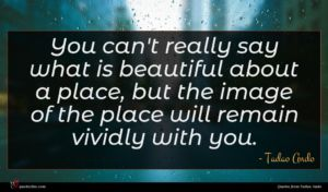 Tadao Ando quote : You can't really say ...