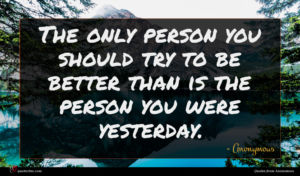 Anonymous quote : The only person you ...