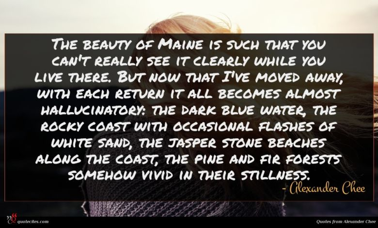 Photo of Alexander Chee quote : The beauty of Maine …