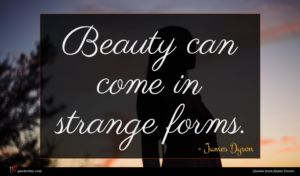 James Dyson quote : Beauty can come in ...