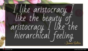 James Salter quote : I like aristocracy I ...