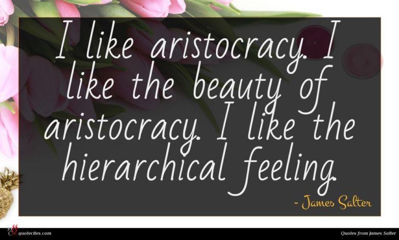 I like aristocracy. I like the beauty of aristocracy. I like the hierarchical feeling.