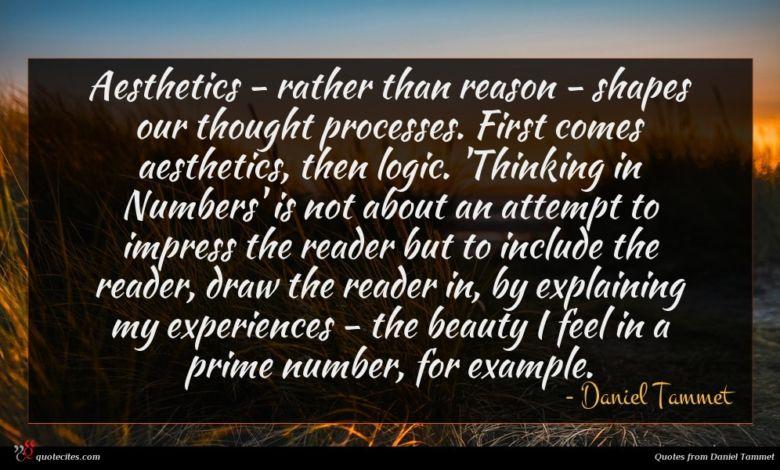 Photo of Daniel Tammet quote : Aesthetics – rather than …